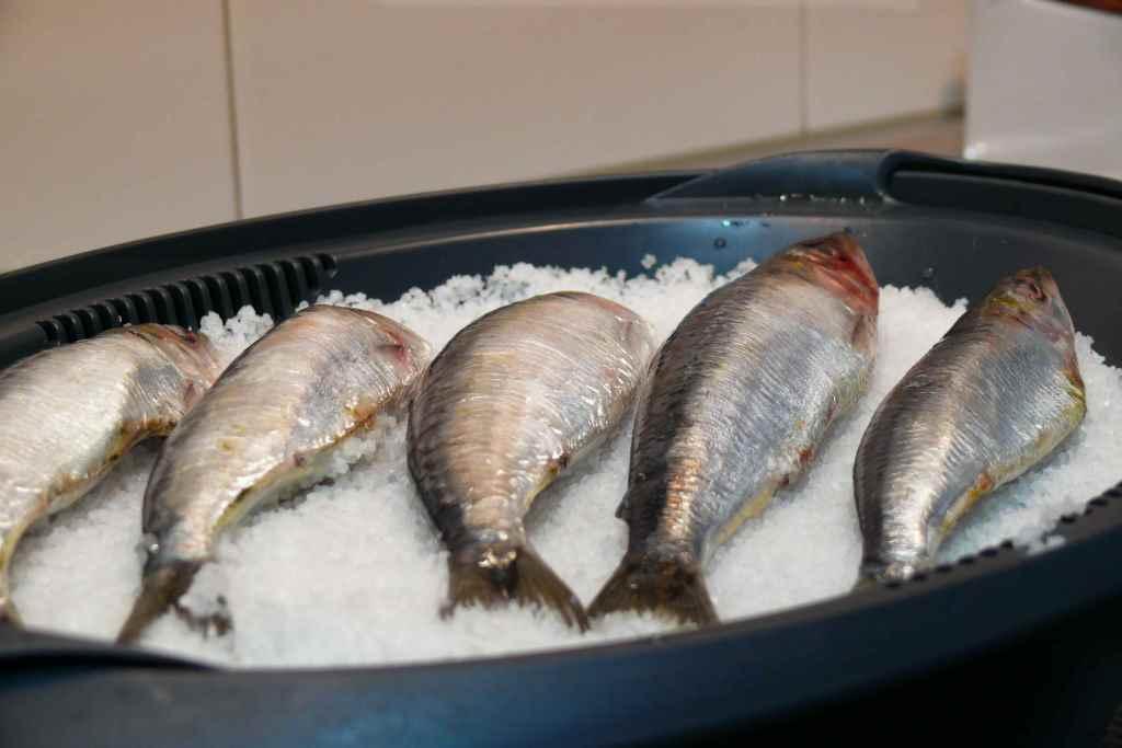 Recetas con sardinas a la sal - Cocinar sin sal ...
